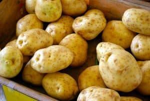 patata-amido